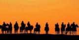 Cowra & District Trail Horse Riders Club