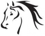 Ipswich & District Trail Horse Riders Inc