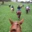 Cobargo Horse & Trail Riders