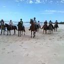 Tweed-Byron Trail Horse Riders Club Inc