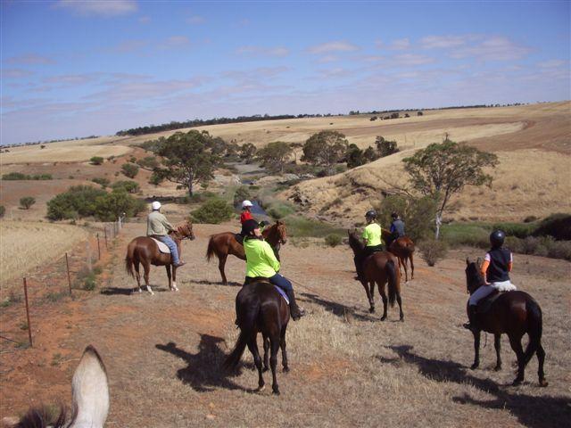 Gawler Trail Horse Riders Club