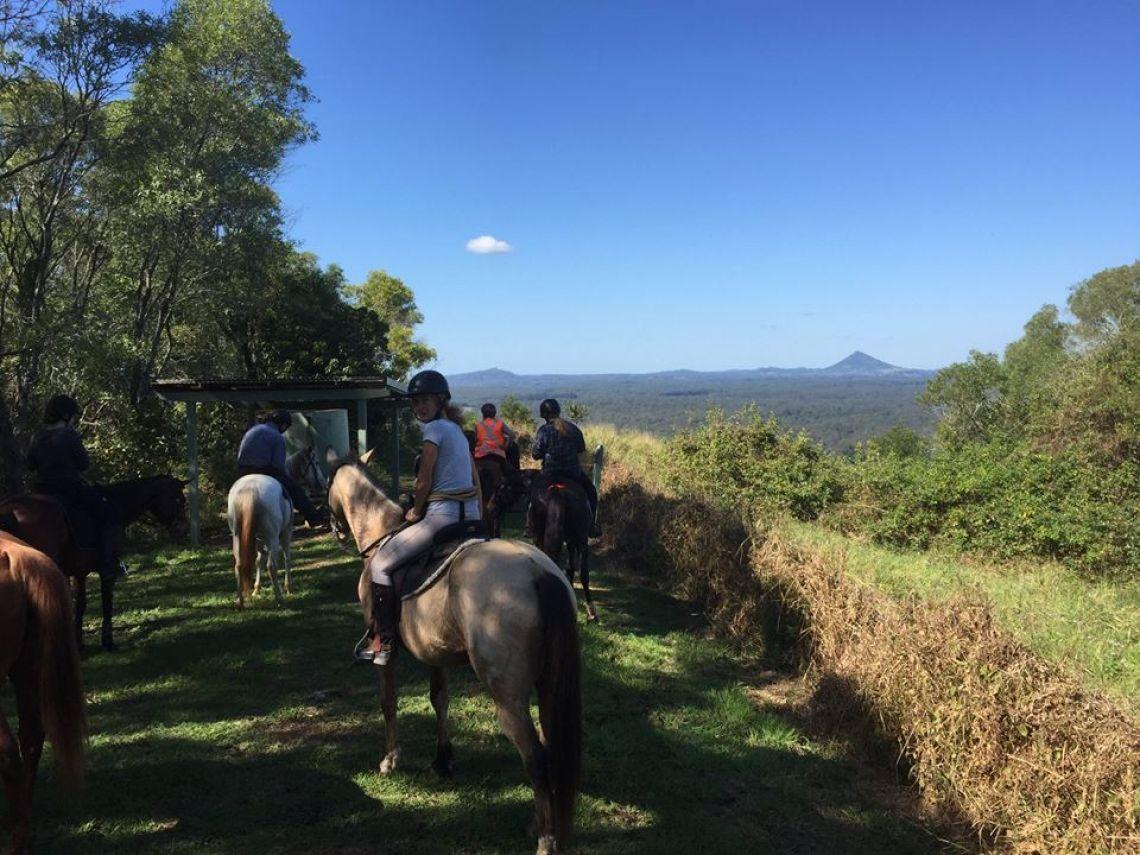Sunny Coast Trail Horse Riders Club Inc