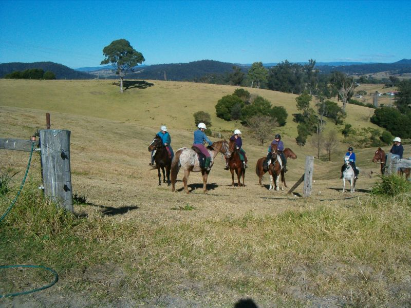 Horses Birthday ride from Pauline s at Brogo to Nelson and Lornas