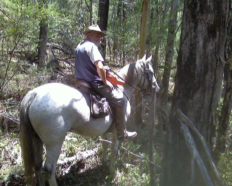 CLEARING AND CHECK TRAIL DONE BY NOEL RICHARD MAREA AND PAULINE