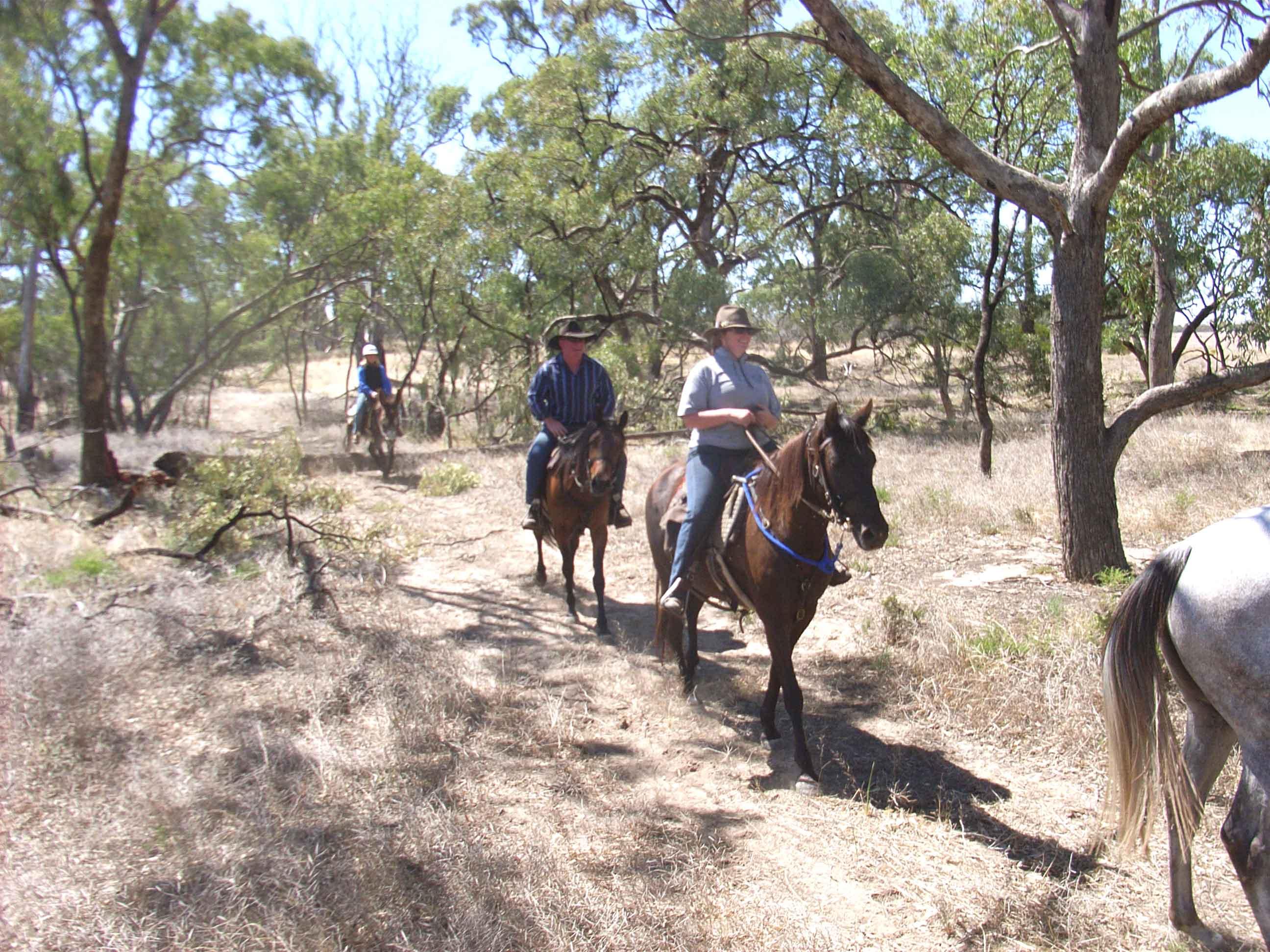Sue riding Darby