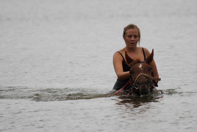 Breanna swimming filly Caprice.