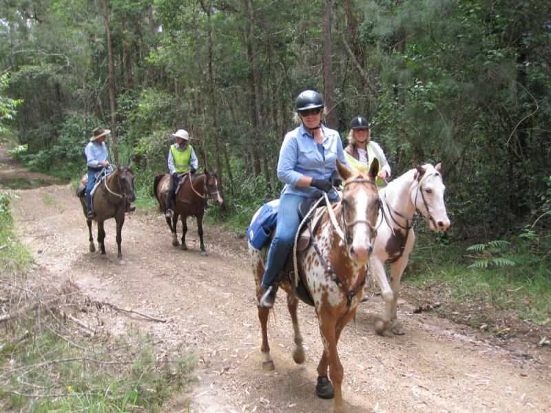 Riders on one of the many trails....