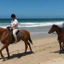 beach ride 014 (700x351)