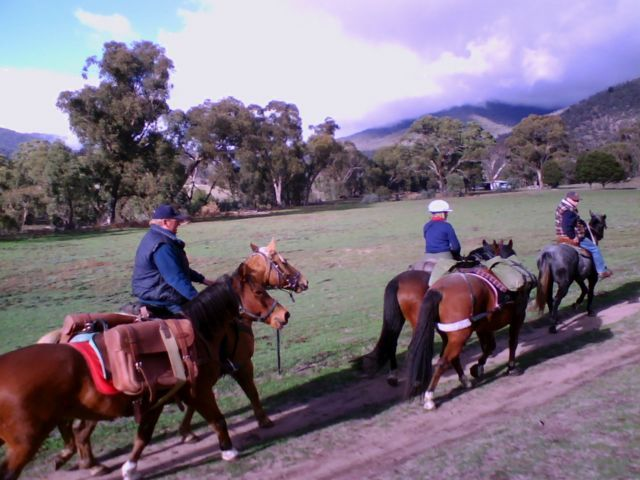 June long weekend 2009.  Jen & Sue's packhorse training weekend.  Heading out along the BNT from Caloola farm.  That's not Sue leading Beau the trainee packhorse, it's Steve giving Beau some encouragement.