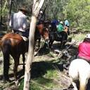 HORSE RIDING 015
