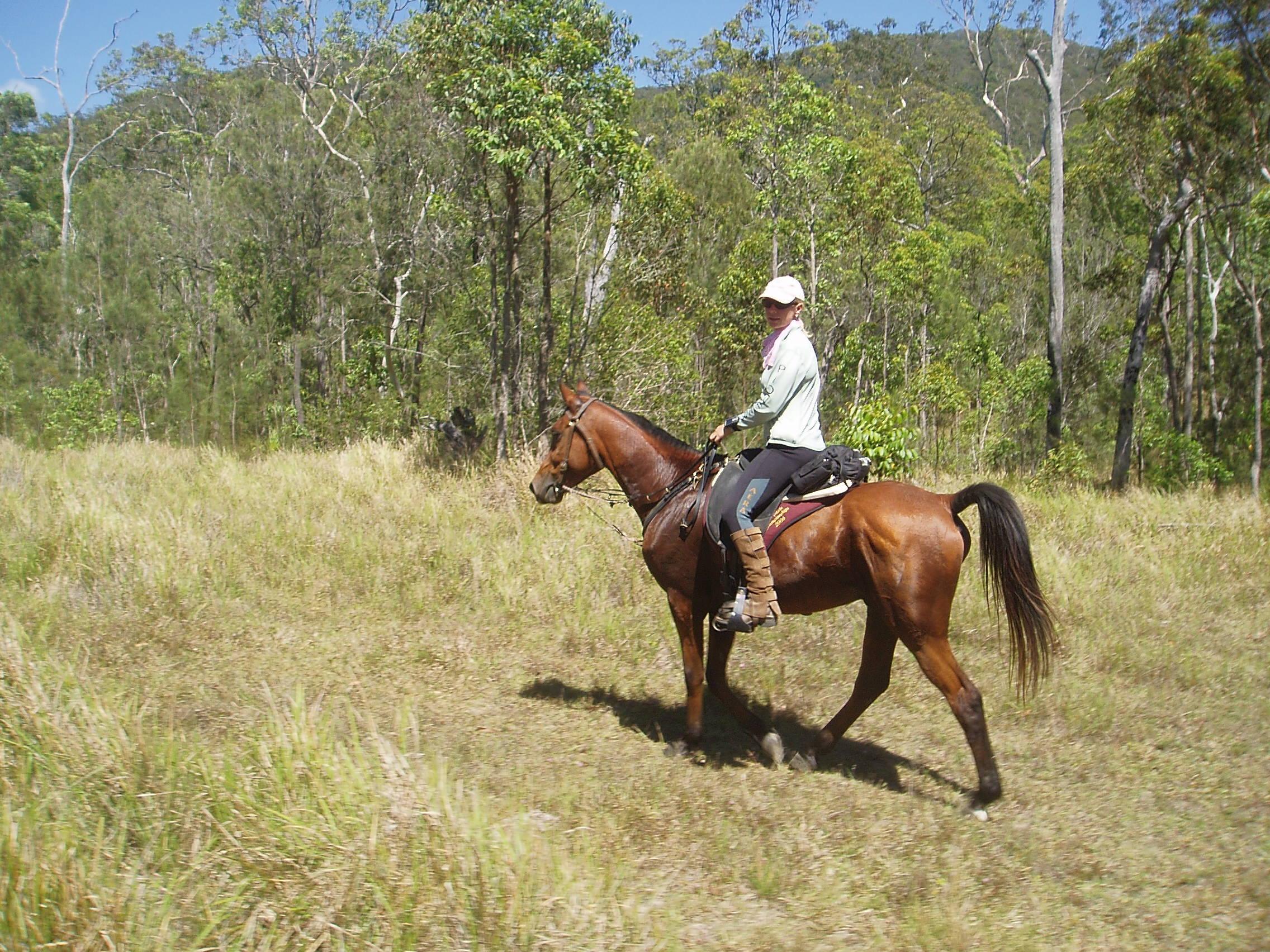 Mellisa Longhurst joined us on her gelding for the challenging Teemburra Dam trailride.