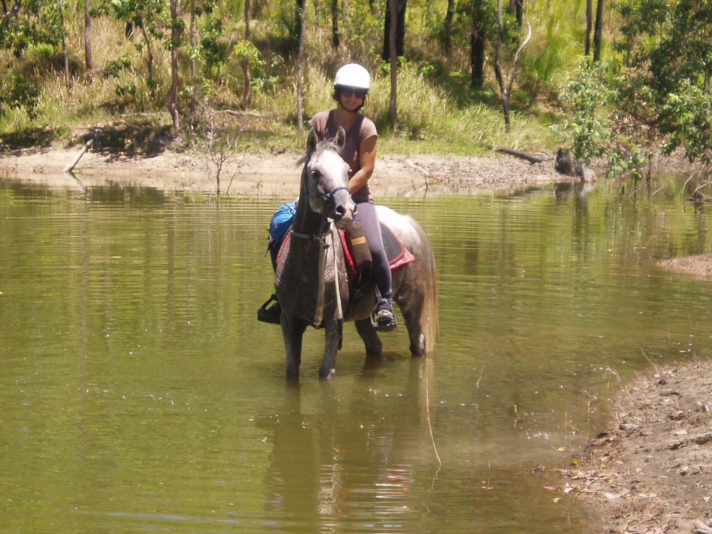 Lian Meaney and her horse Beau cooling off after a hot ride at Teemburra Dam.