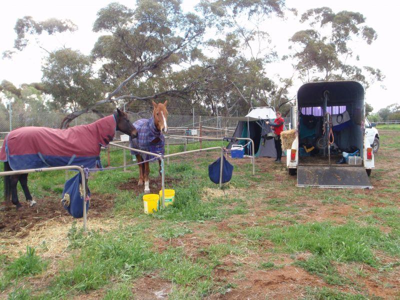tamara doing a good job setting up camp