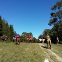 Mt Macedon Pub Ride 2014