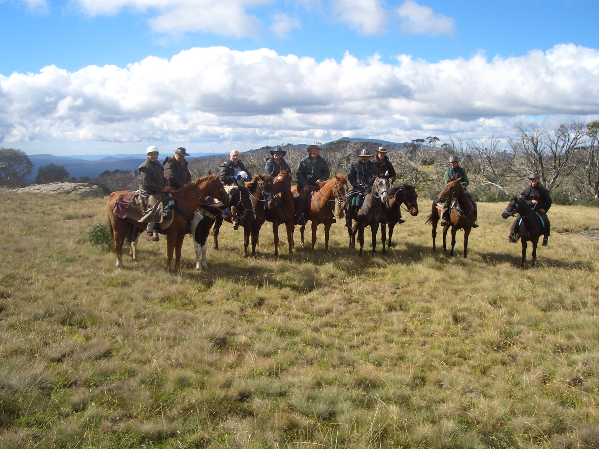 Riders enroute to Davies Plain Hut