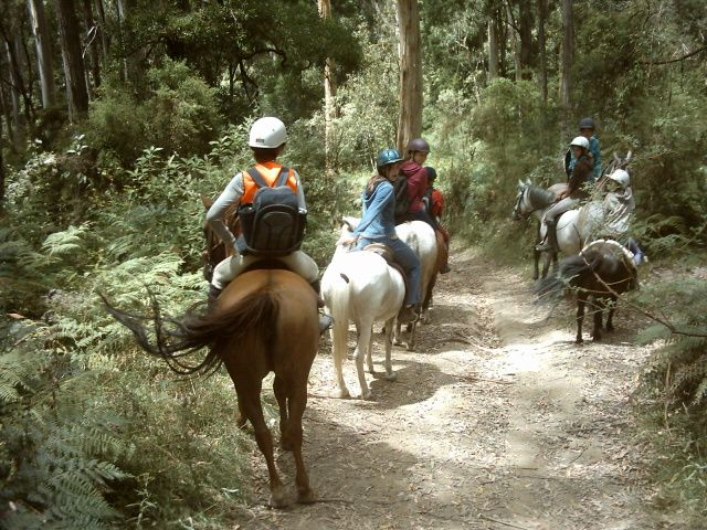 riding to our lunch spot on Goat track