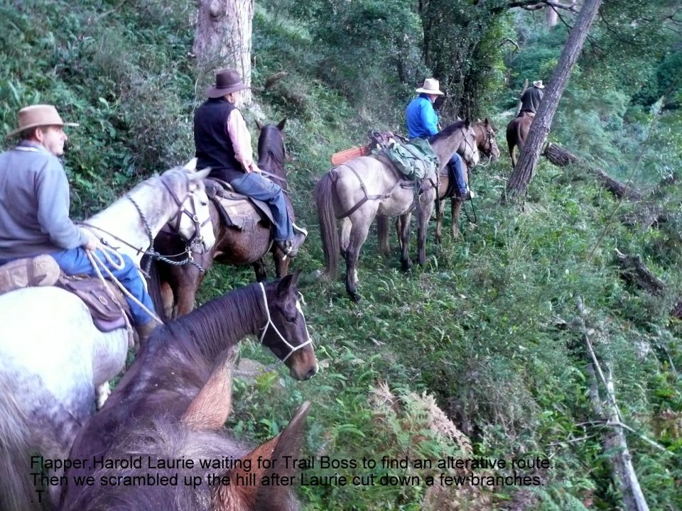 3 Days of  riding Wildness and Heritage trails in the Deua National Park of South East New South Wales.